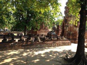 Wat Phra Mahathat  Ayuthaya